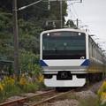Photos: E531系K406編成 KY入場回送 3
