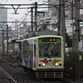 写真: 都電荒川線 7000形7018号車