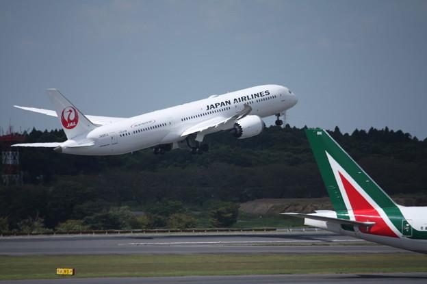 Photos: 日本航空 JAL ボーイング787-9 JA861J (6)