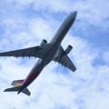 アシアナ航空 エアバスA330-300 HL7792 (1)