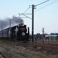 Photos: SL銚子 D51498+旧型客車+DE10 1752 (16)