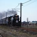 Photos: SL銚子 D51498+旧型客車+DE10 1752 (17)