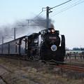 Photos: SL銚子 D51498+旧型客車+DE10 1752 (19)