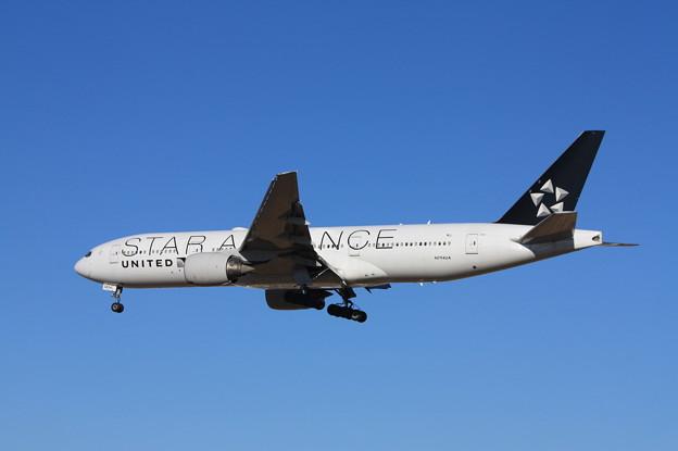 写真: ユナイデッド航空 ボーイング777-200 N794UA スターアライアンス塗装 (6)