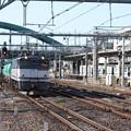 Photos: EF65 2063牽引 貨物列車 (3)