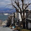 Photos: 春まだ遠い八幡坂