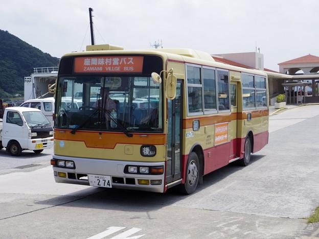 IMGP1651