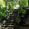 日差しをうける階段