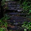 臨川禅寺境内階段