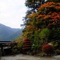 妙覚禅寺にも秋の訪れ