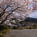 観桜対角線法撮影
