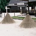 Photos: 古都京都をフィルム一眼カメラで撮影するとまた格別なものがある♪