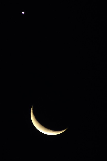 月   金星