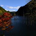Photos: 王滝村の紅葉