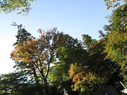 初秋の高尾山