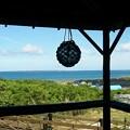 Photos: 沖縄の風景