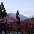 Photos: 写真00394 青木湖から