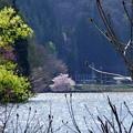 Photos: 写真00403 青木湖で