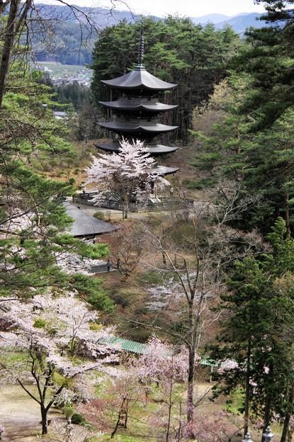 写真00607 福泉寺の五重塔