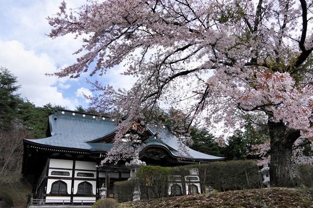 写真00643 福泉寺の大観音堂