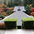 Photos: 雲巖寺の紅葉2