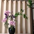 木苺の花!