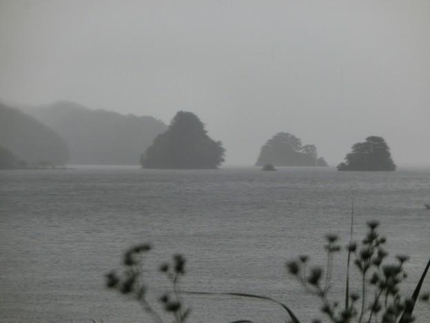 秋元湖の島