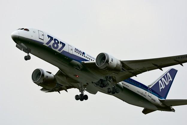 写真: JA818A Boeing787-8
