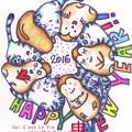 Photos: 2016 new year