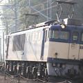 EF64 1019(コキ)