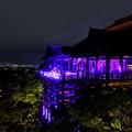 2015ピンクリボンデーライトアップ清水寺