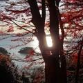Photos: 扇谷より 松島