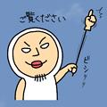 IMG_12579