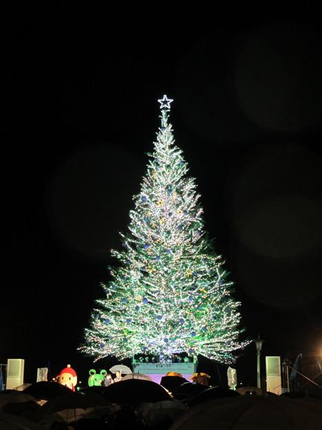 2015 函館クリスマスファンタジー5