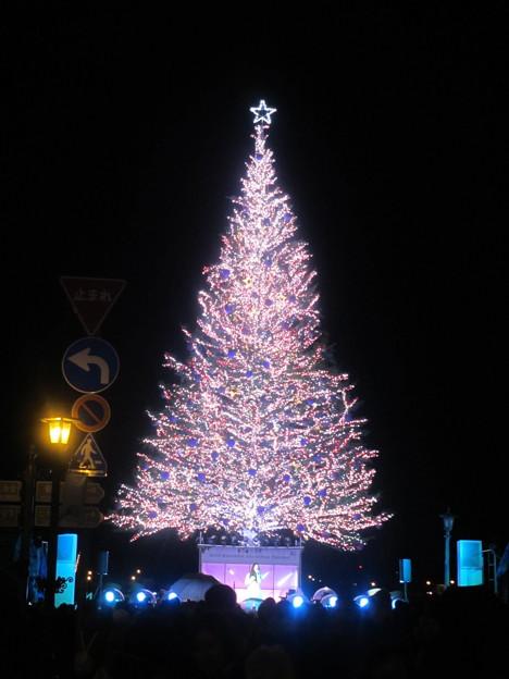 2015 函館クリスマスファンタジー13