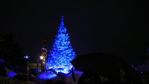2015 函館クリスマスファンタジー点灯式3