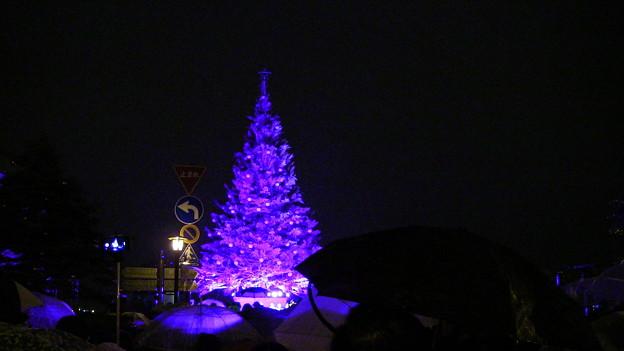 2015 函館クリスマスファンタジー点灯式4
