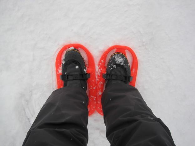 2011冬の旅 016