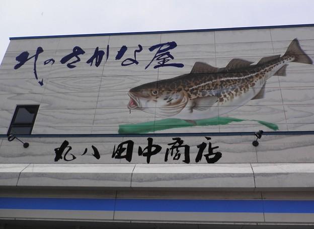 Photos: 鱈
