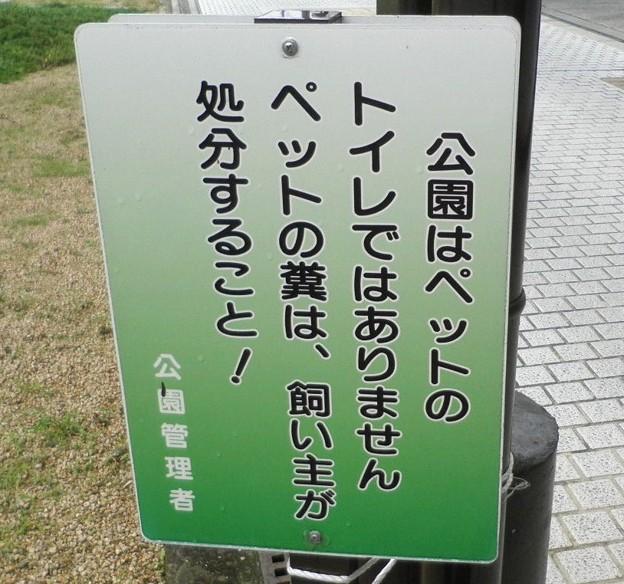 犬糞 ~小野市