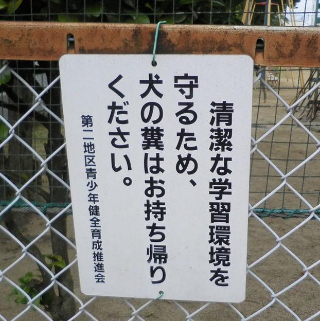 犬糞 ~福島市