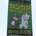 Photos: オリラジヲタ