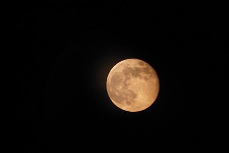 朱月の横顔