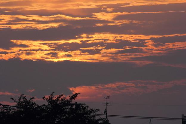 Photos: でも雲が多い