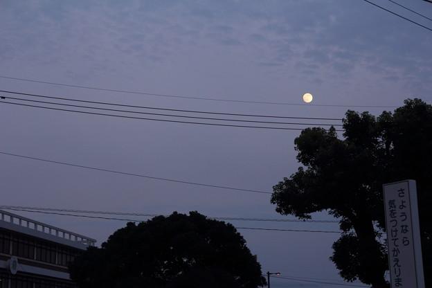 Photos: 反対側は満月