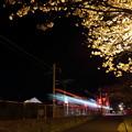 夜桜・・おれんじ鉄道が走る
