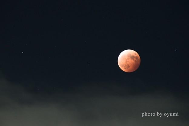 赤い月の晩に。