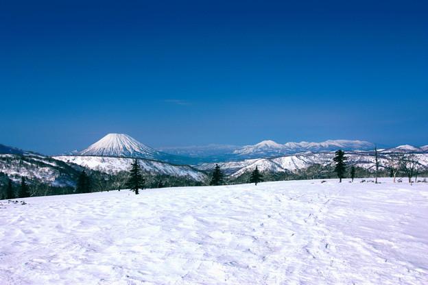 Photos: 春の青