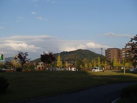 PA254359