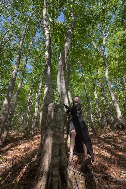 森の守護神 #portrait #ポートレート